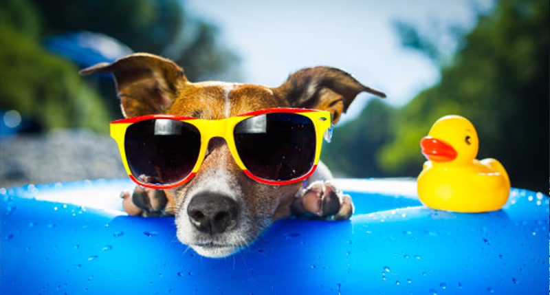 10 Reasons To Wear Sunglasses More Often